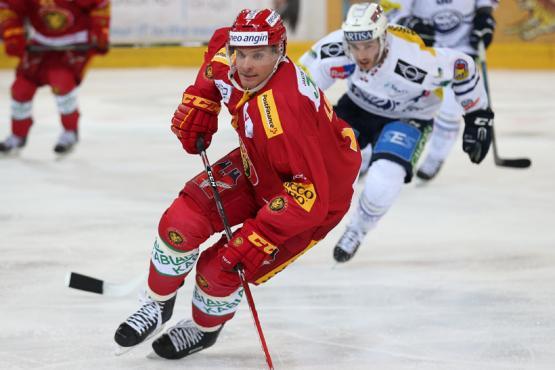 Eishockey Tigers